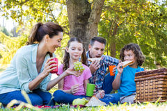 Happy family on a picnic in the park Royalty Free Stock Images