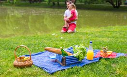 Happy family picnicking in the park Royalty Free Stock Images