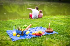 Happy family picnicking in the park Stock Images