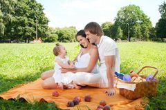 Happy Family picnicking in the park Royalty Free Stock Image