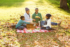 Happy family picnicking in the park together Royalty Free Stock Photo