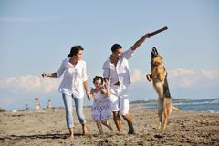 Happy family playing with dog on beach Stock Image