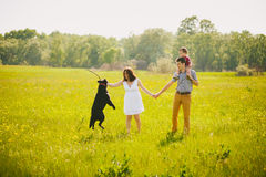 Happy family playing with labrador in meadow Stock Images