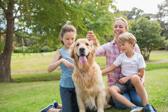Happy family playing with their dog Stock Images