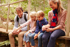 Happy family playing on a wooden bridge in a forest royalty free stock images
