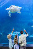 Happy family pointing at turtle in a tank Royalty Free Stock Images