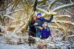 Close-knit, cheerful family in the winter wood stock image