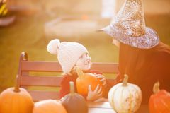 Mother and child choosing pumpkins for jack-o-lantern. Royalty Free Stock Image