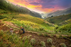 Happy family in rice terraces.