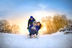 Family rides the sledge in the wood royalty free stock images