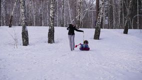 Happy family rides and smiling snowtube on snowy roads.slow motion. snow winter landscape. outdoors sports stock footage