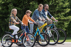 Happy family riding bicycles while spending time together in park Stock Images