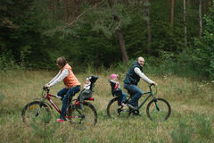 Happy family riding bike in wood Stock Photos