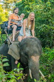 Happy family riding on an elephant, woman sitting on the elephant`s neck Royalty Free Stock Photos