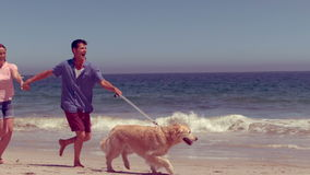 Happy family running with dog. On the beach stock footage