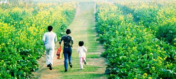Happy family running in park Stock Photography