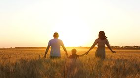 A happy family runs across a wheat field at sunset. Father and mother hold their son`s hands. Family holiday.