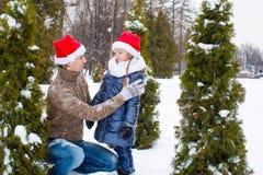 Happy family in Santa hats with christmas tree Royalty Free Stock Image
