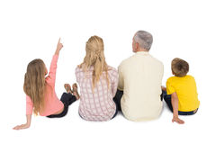 Happy family sitting and pointing Royalty Free Stock Photo