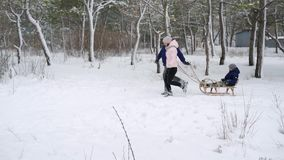 Happy family sledding on snowy winter day. Father and mother pull sled ropes with son on snowfall. Boy sledge outdoors