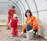 Happy family sows seeds Stock Photography