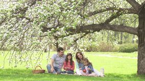 Happy family spends time on a picnic near the blossoming apple-tree. Dad, mom and two daughters spend their time outdoor. Happy family spends on a picnic near stock video footage