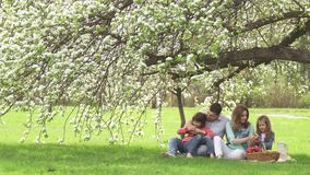 Happy family spends time on a picnic near the blossoming apple-tree. Dad, mom and two daughters spend their time outdoor. Happy family spends on a picnic near stock footage