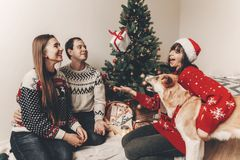 Happy family in stylish sweaters and cute dog having fun at chri. Stmas tree with lights. atmospheric emotional moments. merry christmas and happy new year Royalty Free Stock Photo