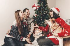 Happy family in stylish sweaters and cute dog having fun with gi. Fts at christmas tree with lights. atmospheric emotional moments. merry christmas and happy new Stock Photography