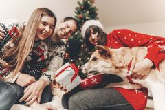 Happy family in stylish sweaters and cute dog having fun with gi. Fts at christmas tree with lights. atmospheric emotional moments. merry christmas and happy new Royalty Free Stock Photos
