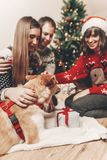 Happy family in stylish sweaters and cute funny dog exchanging g. Ifts at christmas tree with lights. emotional moments. merry christmas and happy new year Royalty Free Stock Photos