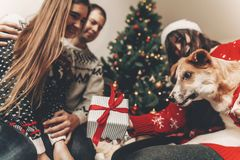 Happy family in stylish sweaters and cute funny dog exchanging g. Ifts at christmas tree with lights. emotional moments. merry christmas and happy new year Stock Image