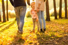 Happy family at sunset in the forest stand with their backs in. Frame stock image