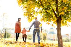 Happy family at sunset walking in the park in autumn stock images