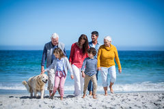 Happy family with their dog at the beach Stock Photography