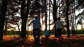 Happy family of three people holding hands walking through the forest against the background of a sunset. Slow motion stock video footage