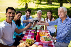 Happy family toasting a glasses of wine Royalty Free Stock Image