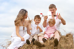 Happy family toy aircraft model on haystack Royalty Free Stock Photo