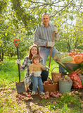 Happy  family with vegetables harvest. In garden Royalty Free Stock Images