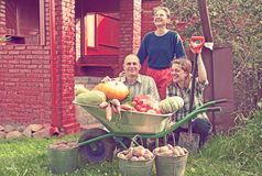 Happy  family with vegetables harvest Stock Images
