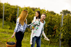 Happy family in vineyard at sunny day Royalty Free Stock Photography