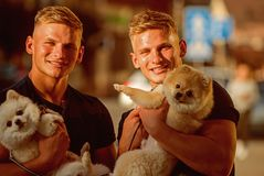 Happy family on walk. Spitz dogs love the company of their family. Twins men hold pedigree dogs. Muscular men with dog. Pets. Happy twins with muscular look stock photos