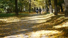 Happy family walking along the park lane on an autumn day. slow motion.  stock images