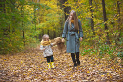 Happy family walking in autumn park - The mother, her daughter and toy Teddy bear among the yellow leaves Stock Image