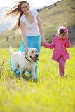Happy family walking with dog. In green field Stock Photos