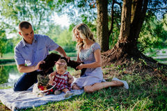 Happy family are walking in the green summer park. Picnic Stock Images