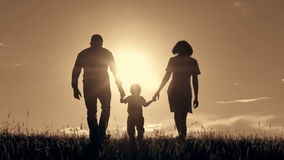 Happy family walking, holding hands at sunset. stock video footage