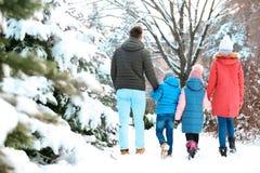 Happy family walking in   park. Happy family walking in winter park Royalty Free Stock Image