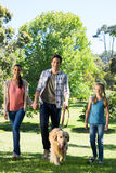 Happy family walking their dog in the park. On a sunny day Stock Image