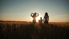 Happy family walking in wheat field on sunset in a warm summer evening. Little son sitting on her father shoulders stock video footage